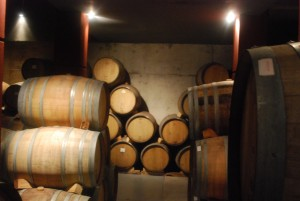 Wine barrels in Maipu Mendoza
